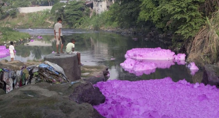 purple water